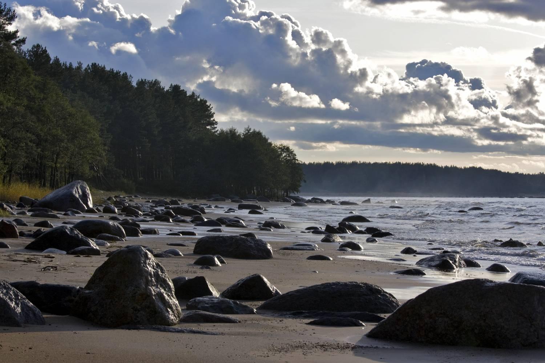Пляж Липово - отзыв о Сосновый Бор, Сосновый Бор, Россия 19